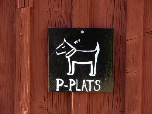 P for hundar