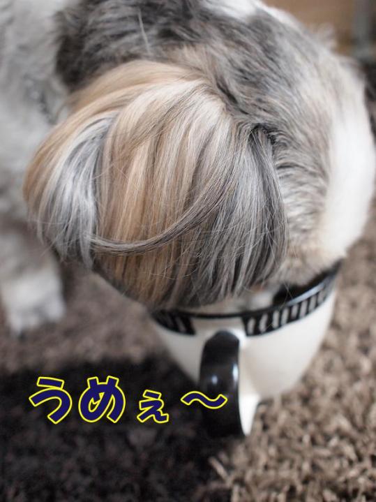 002_20110501114146.jpg