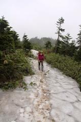 雪渓がでてきた