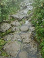 登山道が滝に・・・
