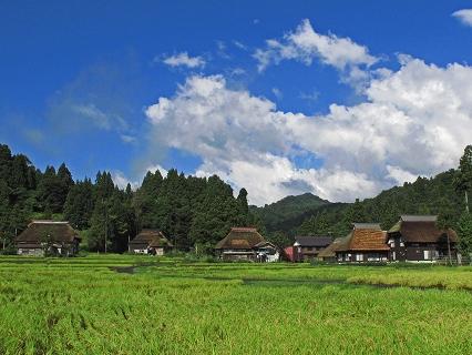 2009.9.新潟棚田風景 174