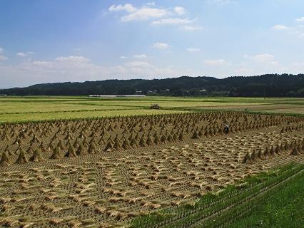 2009.9田園風景020
