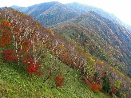 2009.10.紅葉 529