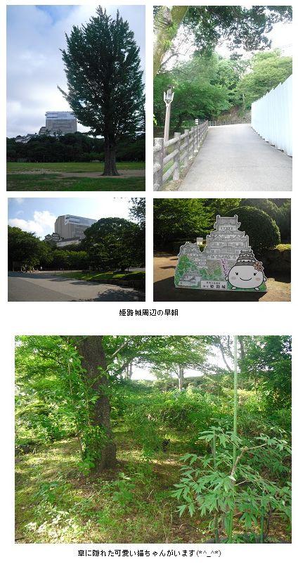 平成23年7月姫路城清掃会1