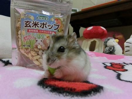 枝豆はおいしいでしゅ!