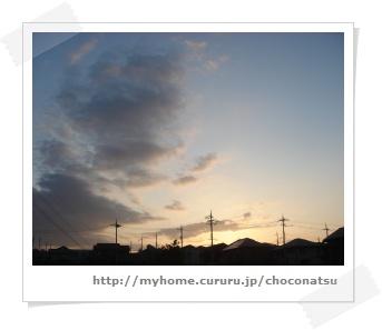 image453033.jpg