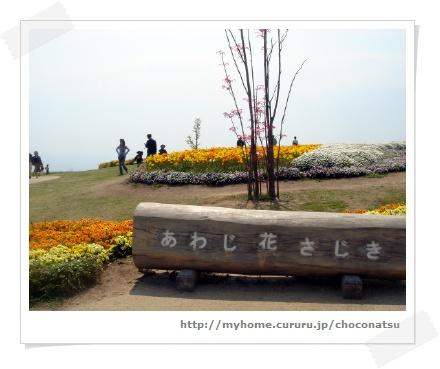 image7385611.jpg