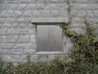 図書館窓穴s