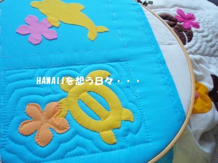 P6113358_convert_20110614101732.jpg