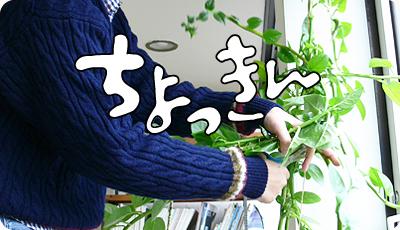 1206_01.jpg