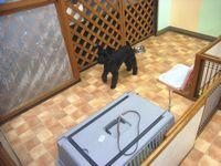 2009-8-23hotel4.jpg