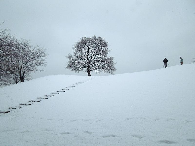120229雪の日1
