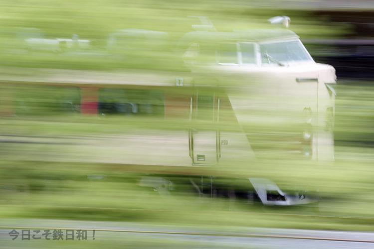 _MG_5251.jpg