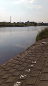 びん沼河岸②