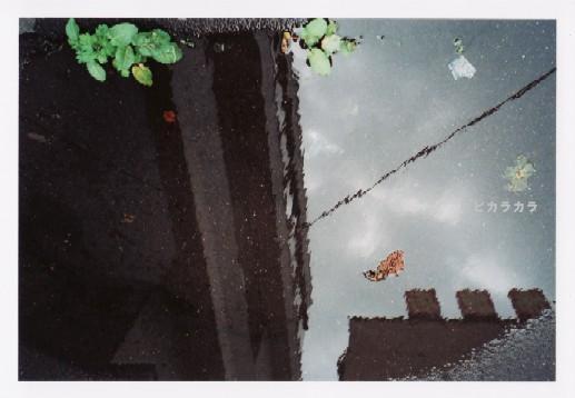 雨の日に。