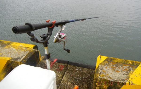 釣れるやろか ^^;