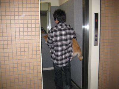 エレベーターも抱っこで