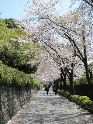 2011_0417富士宮御用邸0050