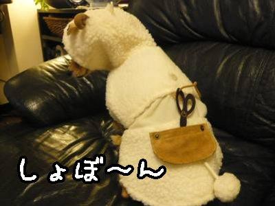 2007-12-26-07.jpg