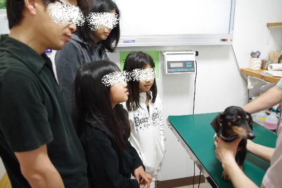 2011_0417toppo0020.jpg
