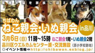 nekoinuoyakai20110306_320x150.jpg