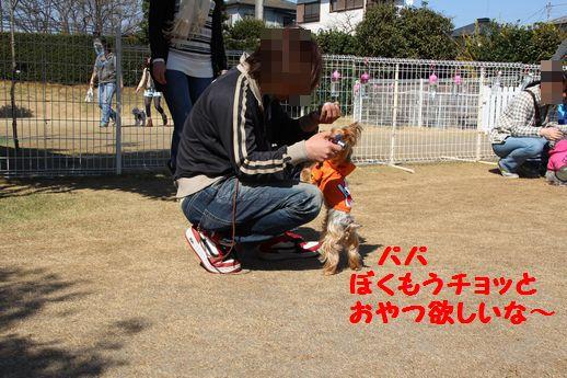 IMG_0317120408.jpg