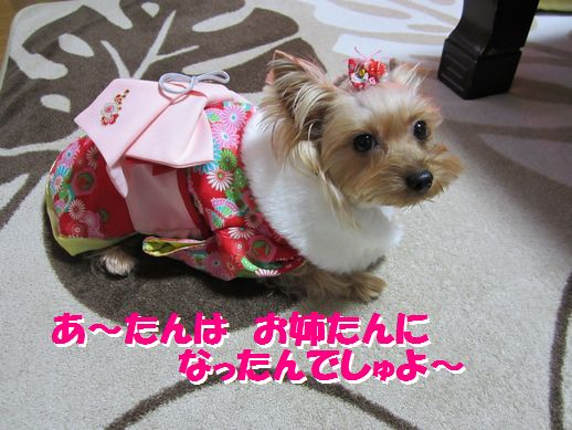IMG_0392120101.jpg