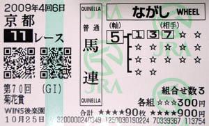 2009kiku02.jpg