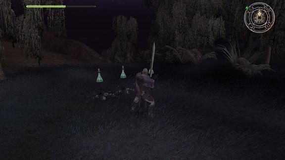 fallenlords potion