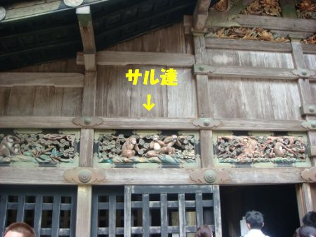 3183.jpg
