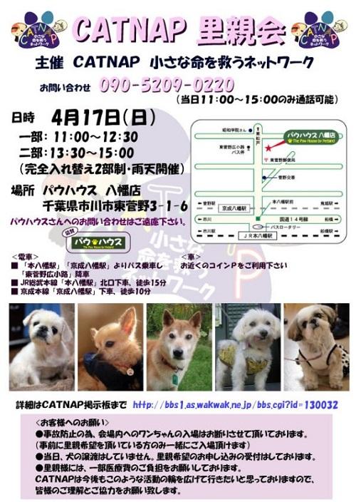 1301804379.jpg