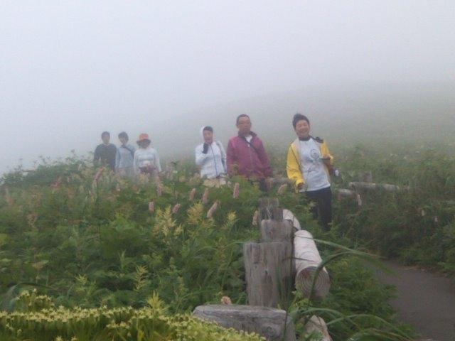 朝、早く起きて礼文の「原生花園」を散策