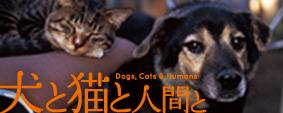 犬と猫と人間とバナー(猫&犬)