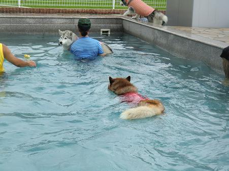 雨の水泳部4