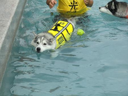 雨の水泳部2