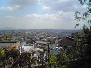 公園からの眺望