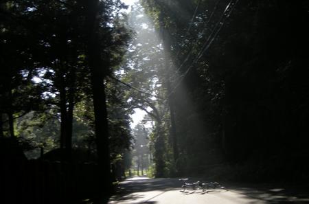 20090916.jpg