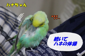 IMG240416-4.jpg