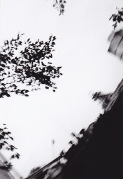 20090919 (4)