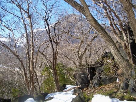 大船山への登山道からCIMG0194