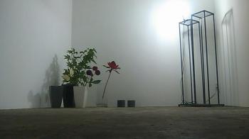 のむら家Flower Work(2009.9.21)-1