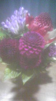 のむら家Flower Work(2009.9.22)