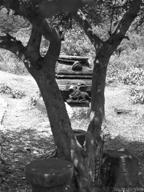 ミーソン遺跡