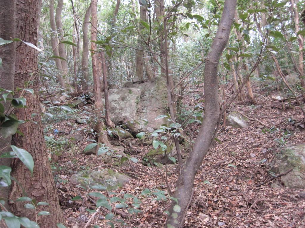寝姿山(鉱物産地)