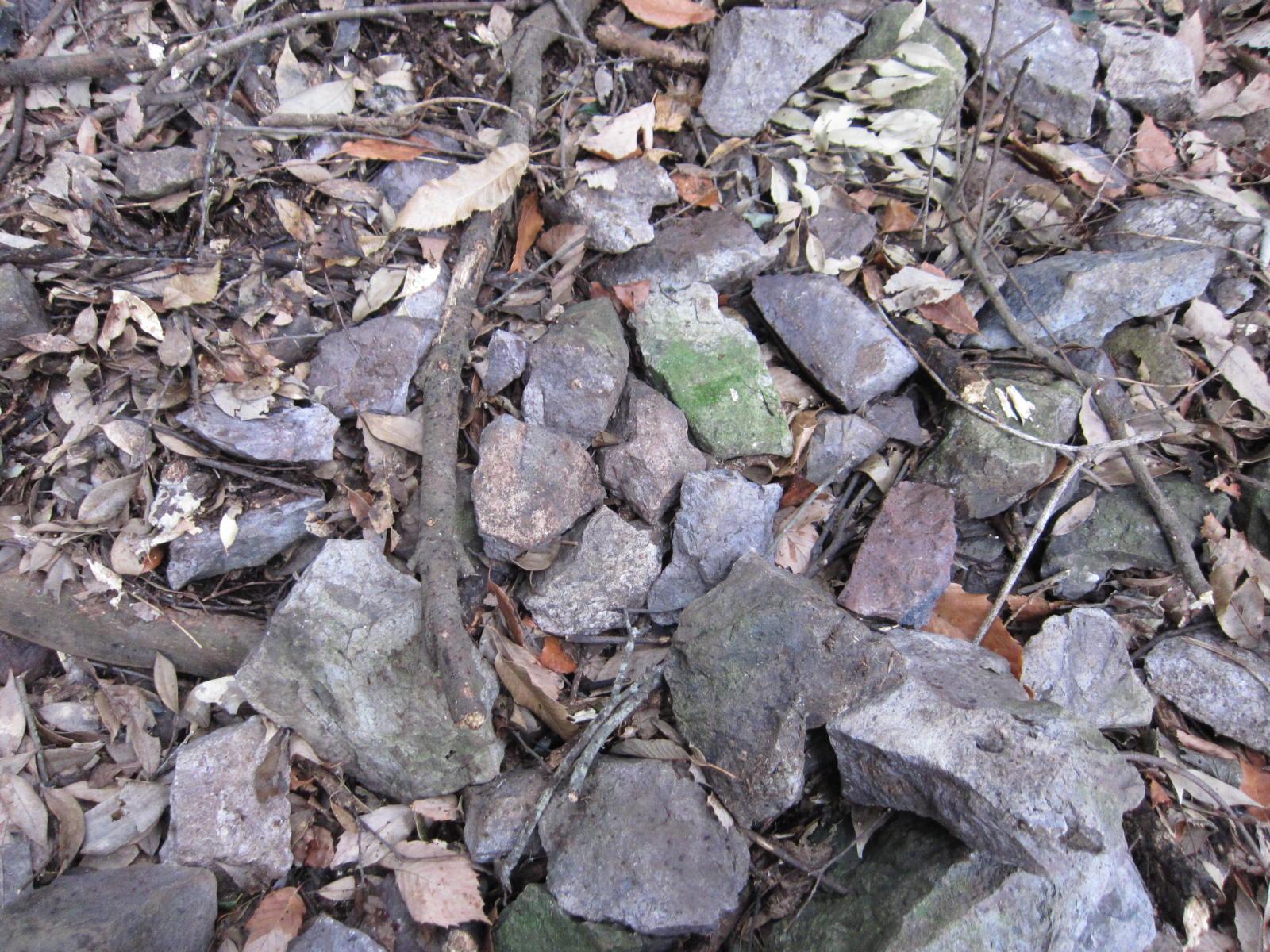 寝姿山(鉱物産地)2