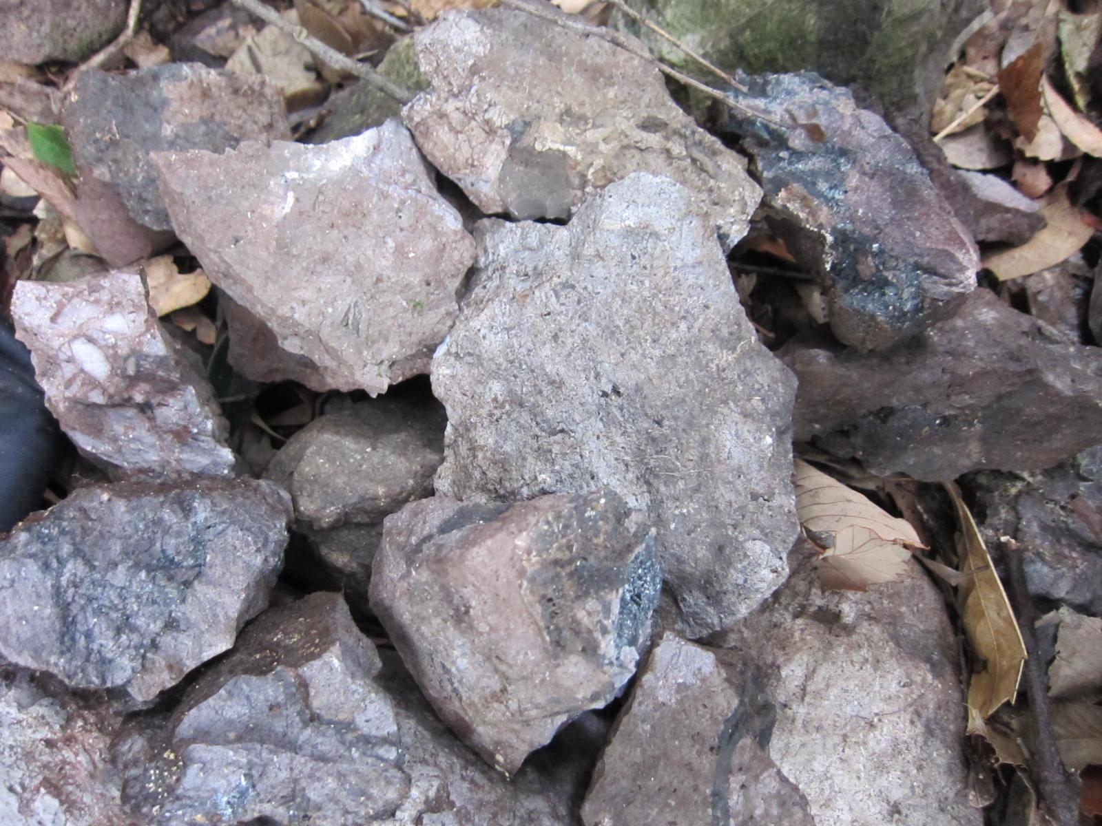 寝姿山(鉱物産地)3
