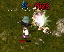20110509-03.jpg