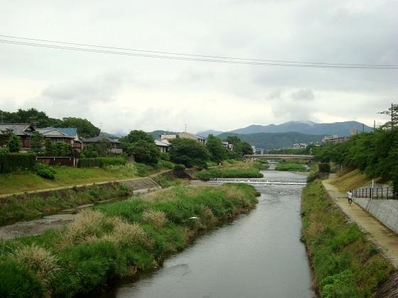 広・高瀬川下鴨アジサイ2011 025