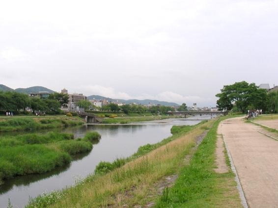 高瀬川下鴨アジサイ2011 187