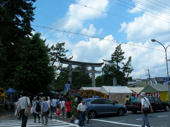 北野桂川2011-6月 002